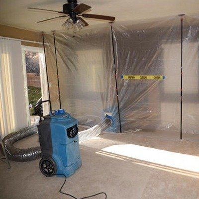 what is involved with mold remediation