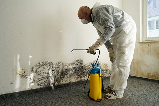 how to prepare for mold remediation